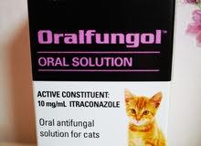 Oral antifungal solution for cat دواء لعلاج فطريات القطط عن طريق الفم