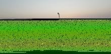 بقعة أرضية مجهزة تطل على البحر