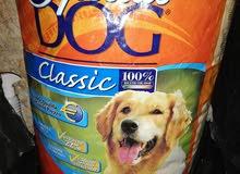 طعام كلاب و مستلزمات