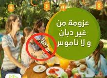 مكافحة حشرات المنزل صراصير نمل بق فئران مواد المانية
