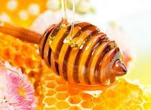 غداء ملكات النحل