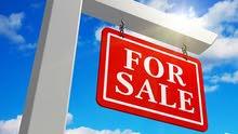 السعر 25 مليون قايل للتفاوض بمساحة 57657 قدم للبيع ارض فى راس الخور