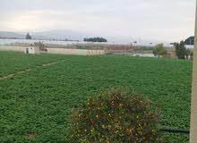 ارض زراعية الظمان