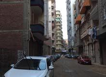 المنصوره شارع احمد ماهر