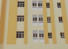 بناية للايجار فيها 16 شقة كل شقة 3 غرف و3 حمامات ومطبخ