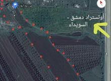 مزرعة مع رخصة بئر إرتوازي ( إتوتستراد دمشق السويداء - قرية مردك )