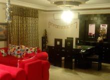شقة لقطة للبيع 250م فيو حديقة كبيرة فيو رائع جدا مدينة نصر
