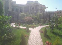 قصر طراز روماني للبيع في جمهورية مصر