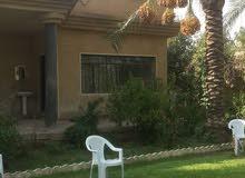 مزرعة مع بيت إلى البيع بغداد الراشدية