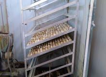 للبيع فقاسة 2000 بيضه فقط 500 دينار
