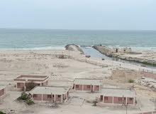 بالتقسيط على 42 شهر امتلك شقة ترى البحر بوضوح بشاطئ الصفا