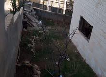 شقة في ام نوارة 4 حي عدن شارع المهندسين مقابل مول الجمزاوي