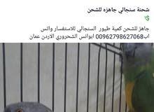 الاردنيه لاستيراد وتصدير الطيور عمان الاردن للتواصل واتس اب00962798627068 ابوانس