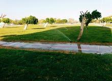 تعشيب وتركيب وصيانة شبكات الري التابت وتنسيق حدائق وحصد المسطحات الخضراء