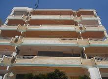 شقة سوبر لوكس واجهة بحري مسجلة - للبيع في شاطئ النخيل اسكندرية
