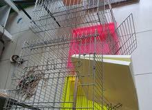 bird cage big AED 80 each