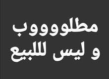 مطلووووب و ليس للبيع... شقة مكسية أو على عظم  في حلب التفاصيل تحت