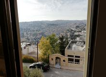 excellent finishing apartment for rent in Salt city - Al NAqab