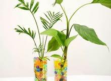 كرات ملونة للديكور تربة النباتات الطبيعية والصناعية