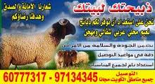 اغنام للبيع مع التوصيل مجانا لباب المنزل 60777317 جميع مناطق الكويت