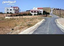 أراضي للبيع في بيرين على شارع وشارعين كوشان مستقل