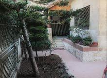 شقة أرضية مع حديقة 300م للبيع في الصويفية