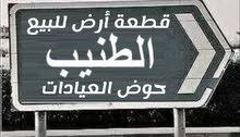 الطنيب حوض العيادات جامعه الشرق الأوسط
