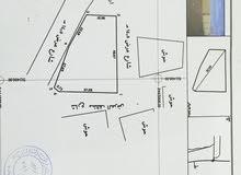 ارض 1512م في ثول للبيع او الاستثمار