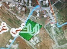 عدة اراضي للبيع في بلال(بدر الجديدة) بسعر مناسب جدا