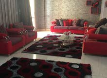 special apartment in Cairo for rent