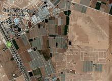 ارض 500م استثماريه بسعر مغري جدا في الطنيب خلف جامعة الاسراء اسكان الامانه
