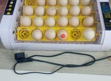 فقاسات بيض سعة 24 بيضه رقم الهاتف