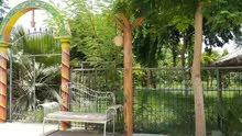 استراحة الواحة الخضراء للايجار اليومي