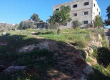 ارض للبيع في جرش بين وادي الدير والمجر