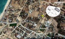 أرض طابو بالبصة الزوايدة على شارعين مخطط
