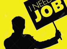 ابحث عن اي وظيفة بشكل عاجل...