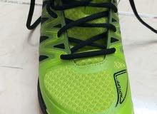 حذاء اديدس جديد