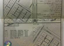 ارض للبيع في ولايه منح حي الشروق المساحه 600م