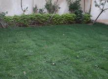 شقة دوبليكس بحديقة راقية جدا _ بأجمل احياء أكتوبر المميزة بالحي الثامن