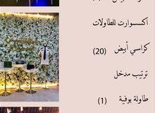 مدينه العين - شارع خليفه امام مسجد الشيخ زايد بن زايد