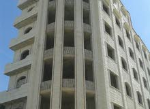 عماره في بيت بوس