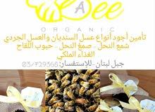 عسل جبل لبنان (SA Bee)