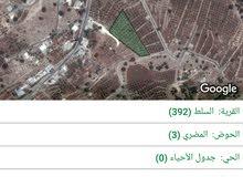 مزرعتين  متلاصقات   للبيع  / حوض المضري اراضي السلط