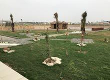 مزرعه للأيجار اليومي والشهري في العبدلي