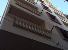 apartment for sale in Alexandria- Agami
