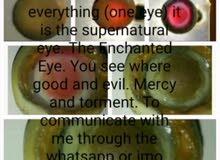 العين التى ترا كل شي