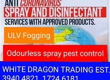 Pest Control  & Disinfection services (Odourless/without smell)
