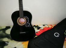 Aquatic guitar for sale