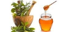 عسل طبيعي بالأعشاب بالجملة