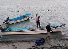 قارب 23 قدام للايجاريصالح لمكدة الجيداروالحداق